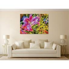 Tablou Canvas Flori Craiova - Crinul colorat - Persona Design