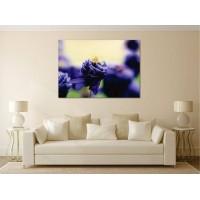Tablou Canvas Flori Craiova - Floare albastra - Persona Design
