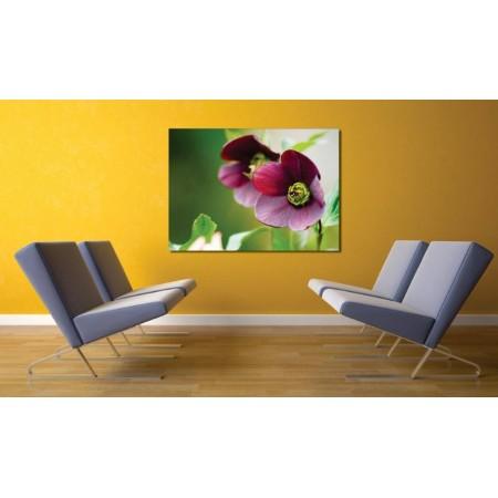 Tablou Canvas Flori Craiova - Floare mov - Persona Design