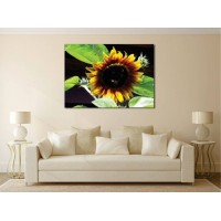 Tablou Canvas Flori Craiova - Floarea soarelui - Persona Design
