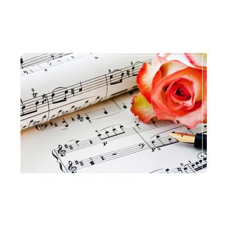 Tablou Canvas Muzica Craiova - Note Muzicale - Persona Design