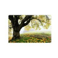 Tablou Canvas Natura Craiova - Copacul - Persona Design