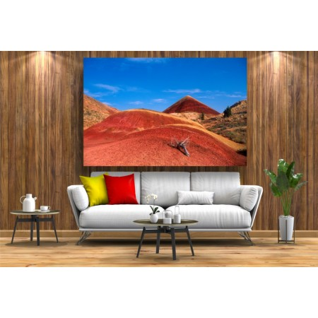 Tablou Canvas Natura Craiova - Stancile rosii - Persona Design