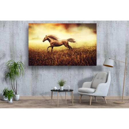 Tablou Canvas Animale Craiova -  Calul din lan- Persona Design