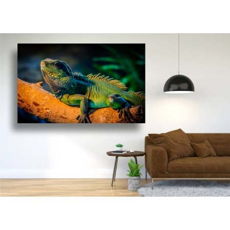 Tablou Canvas Animale Craiova -  Cameleonul multicolor- Persona Design