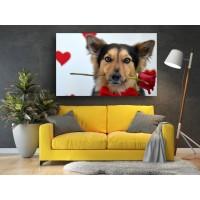 Tablou Canvas Animale Craiova -  Catelul romantic- Persona Design