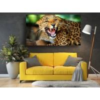 Tablou Canvas Animale Craiova -  Felina gata de atat- Persona Design