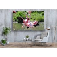 Tablou Canvas Animale Craiova -  Flamingo roz- Persona Design