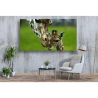 Tablou Canvas Animale Craiova -  Girafe tandre- Persona Design