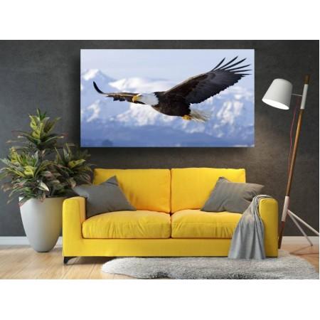 Tablou Canvas Animale Craiova -  I belive I can fly- Persona Design