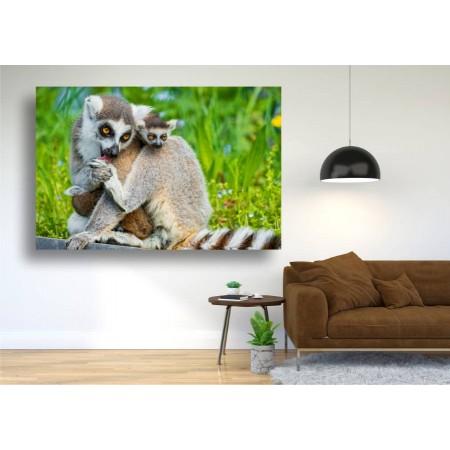 Tablou Canvas Animale Craiova -  Lemurienii- Persona Design