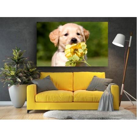 Tablou Canvas Animale Craiova -  Miros de floare- Persona Design