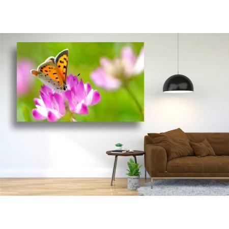 Tablou Canvas Animale Craiova -  Polenizare violeta- Persona Design