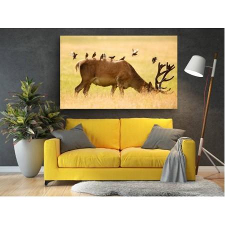 Tablou Canvas Animale Craiova -  Printre prieteni- Persona Design
