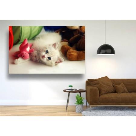 Tablou Canvas Animale Craiova -  Vrei sa ne jucam- Persona Design