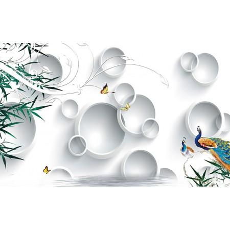 Fototapet Abstract Personalizat - Cercuri si Pauni