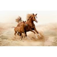 Fototapet Animale Personalizat - Calul si Manzul
