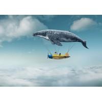 Fototapet Copii Personalizat - Balena - Persona Design
