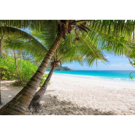 Fototapet Natura Personalizat - Plaja