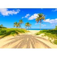 Fototapet Natura Personalizat - La plaja