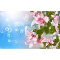 Fototapet Natura Personalizat - Flori si Baloane