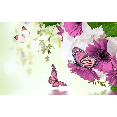 Fototapet Natura Personalizat - Flori si Fluturi