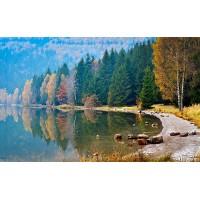 Fototapet Natura Personalizat - Lac in padure