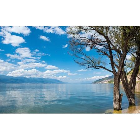Fototapet Natura Personalizat - Cer Albastru