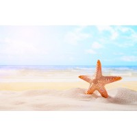 Fototapet Natura Personalizat - Steluta de mare