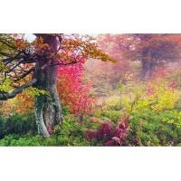 Fototapet Natura Personalizat - Padurea Roz