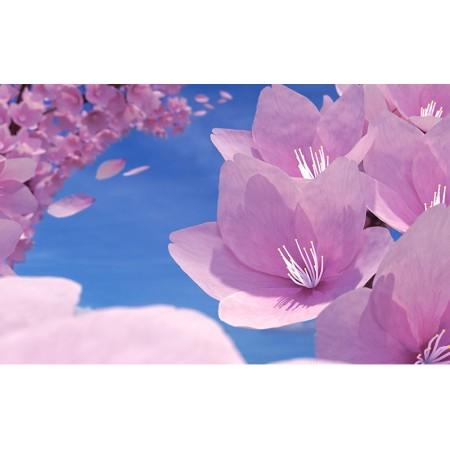 Fototapet Natura Personalizat - Floare Violet