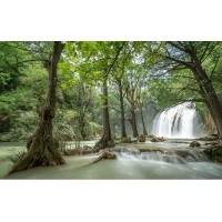 Fototapet Natura Personalizat - Cascada in Padure