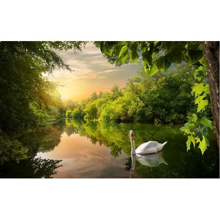 Fototapet Natura Personalizat - Lebada pe Lac