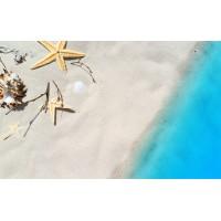 Fototapet Natura Personalizat - Steaua de Mare