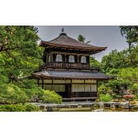 Fototapet Orase Personalizat - Kyoto